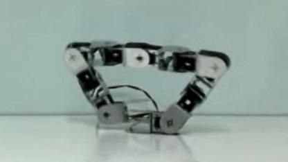 Roboter Rebis: schlängeln, rollen, gehen