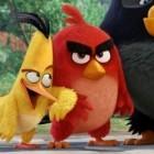 Angry Birds: Rovio entlässt 16 Prozent der Belegschaft