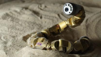 Bewegt sich wie eine echte Schlange: Roboterschlange der Carnegie Mellon University