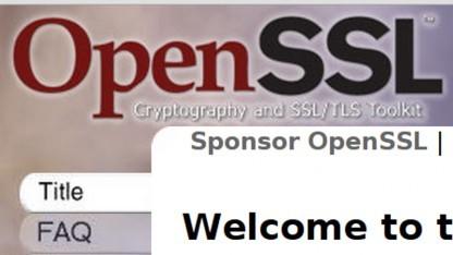 Alte Crypto in OpenSSL auszumustern wird schwierig.
