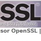 Sicherheitslücken: OpenSSL behebt drei Lücken und bietet Workaround für Poodle