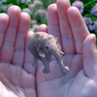 Augmented Reality: Google investiert 542 Millionen US-Dollar in Magic Leap