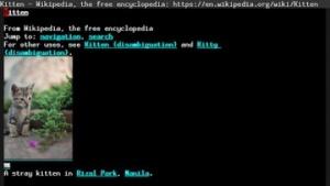 Der in Emacs eingebaute Browser Eww