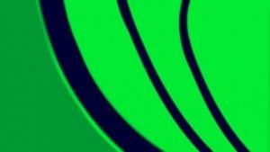 Ein Exit-Server im Tor-Netzwerk hatte Binärdateien manipuliert. Er ist inzwischen aus dem Tor-Netzwerk erntfernt worden.