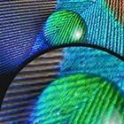 Ultrasharp UP2715K: Dells 5K-Monitor für 2.500 US-Dollar ist fertig