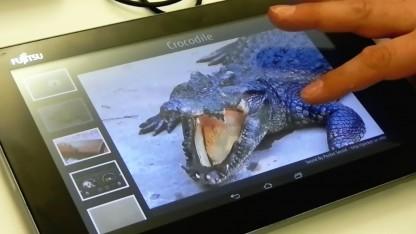 Das Haptic Display bringt auch Krokodile in den Streichelzoo