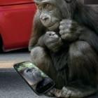 Corning: Gorilla Glass 4 soll Stürze abfangen