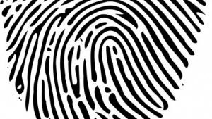 Device Fingerprinting soll nach Willen der EU den gleichen Richtlinien unterliegen wie die Cookies.