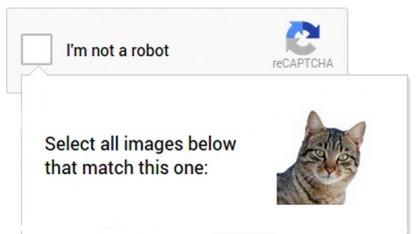 Katzen-Memory für mobile Geräte