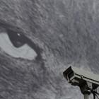 Europäischer Gerichtshof: Videoüberwachung vor privatem Haus verboten