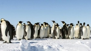 In diesem Jahr ist wieder viel und heftig im Linux-Umfeld diskutiert worden.