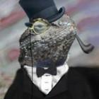 DDOS-Attacken: Lizard Stresser feuert mit gehackten Heimroutern