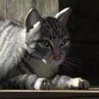 PowerVR 7XT: Img Tech macht die Katze für Apple kuschelig