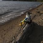 Hitchbot: Trampender Roboter startet Deutschlandreise