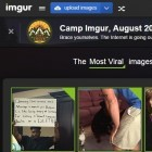 Bildernetzwerk: Imgur bietet jetzt allen Nutzern unbegrenzten Speicherplatz