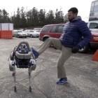 Spot: Boston Dynamics entwickelt robotischen Hund