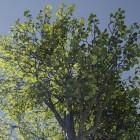 Epic Games: Unreal Engine 4.7 mit weicheren Übergängen
