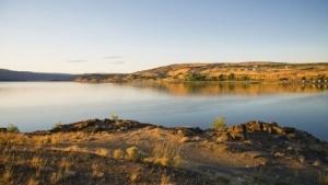Soap Lake im US-Bundesstaat Washington: Wie überlebt das Bakterium in dieser Umgebung?
