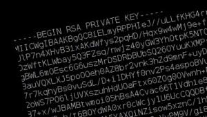 Bekannte private Schlüssel von SSH-Geräten, die mit dem Internet verbunden sind.