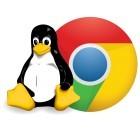 Linux: Chrome benötigt aktuelle Kernel-Features