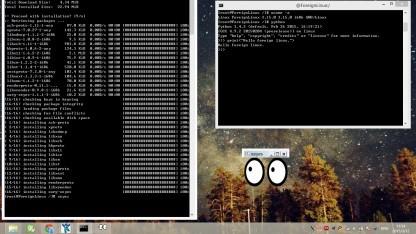 Mit Foreign sollen Linux-Anwendungen auch unter Windows laufen.