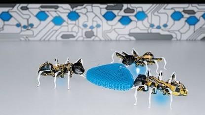 Bionic Ants: Handlungen und Bewegungen aufeinander abstimmen
