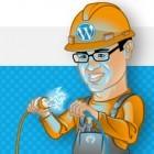 Cross-Site-Scripting: Zahlreiche Wordpress-Plugins verwenden Funktion fehlerhaft