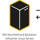 Mumblehard: Malware verwandelt Linux-Server in Spam-Bots