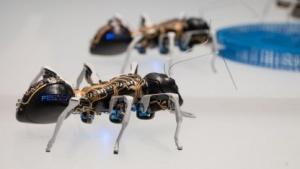 Bionic Ants: freiliegende Elektronik wirkt schick