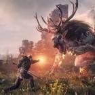 Sabotagevorwurf: Witcher-3-Streit zwischen AMD und Nvidia