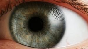 Fujitsus Datenbrille projiziert das Bild direkt auf die Netzhaut des Nutzers.
