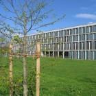 Bundesarbeitsgericht: IT-Verantwortlicher wegen illegalen Kopierens entlassen