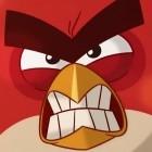 Angry Birds 2: Vogelauswahl im Schweinekampf