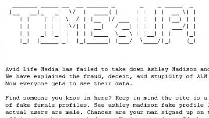 Datendiebe haben mehrere Gigabyte an Kundendaten veröffentlicht, die von dem Seitensprungportal Ashley Madison stammen sollen.