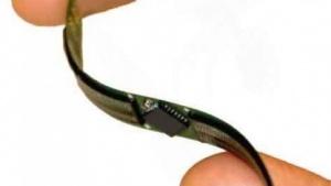 Künstliches Facettenauge auf einem flexiblen Band