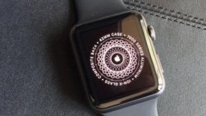 Apple Watch Steel bei der Einrichtung