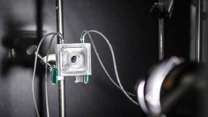 Photosynthese-System: 0,8 Mikroliter Wasserstoff in der Sekunde