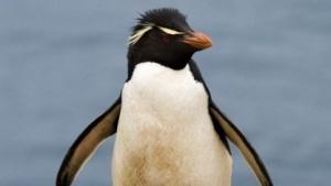Linux 4.3 ohne Ext3-Treiber