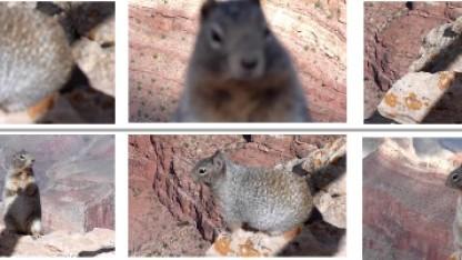 Dank neuronaler Netzwerke sollen die automatisch generierten Vorschaubilder von Youtube künftig besser werden.