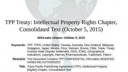 Ein Entwurf von TTIP wurde von Wikileaks veröffentlicht.
