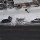 Einparkhilfe von Bosch: Autos sollen freie Parkplätze erkennen und melden