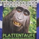 Kein Copyright für Tiere: Klage zu Affen-Selfie in den USA gescheitert
