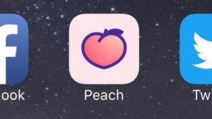 Logo von Peach