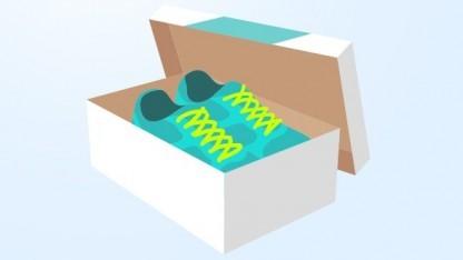 Shoe-Tracking-Grafik von Runkeeper