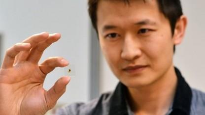 Kenneth Chau mit beschichtetem Glas: Fenster filtern selektiv Licht und Wärmestrahlung.