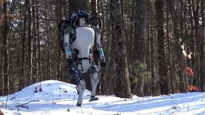 Humanoider Roboter Atlas im Schnee: steht auf, wenn er umgeworfen wurde