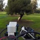 Skydio: Diese Drohne fliegt auch im Wald schnell