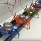 Schwarmkonzept: Sechs Roboterameisen ziehen tonnenschweres Auto