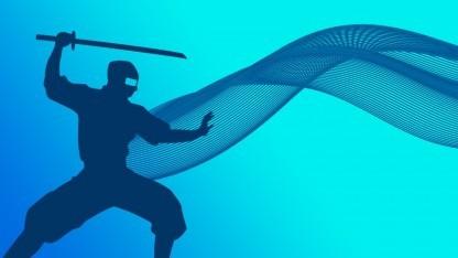 Logo der Ninja Developer Platform