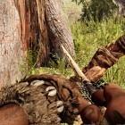 Far Cry Primal: Die Ultra-HD-Texturen lohnen sich selten